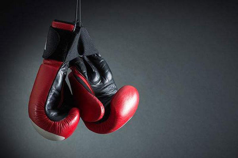 拳击、自由搏击、MMA未来